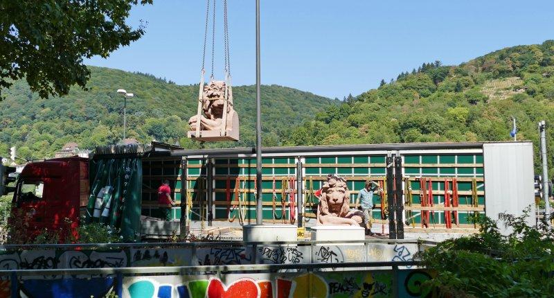 Karlstor Heidelberg - Löwe fliegt ein